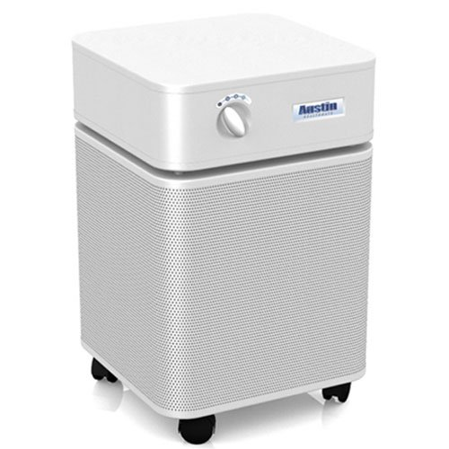 Austin Air HealthMate Plus (HM450) - thing to consider before buying an air purifier - topratedhomeproducts